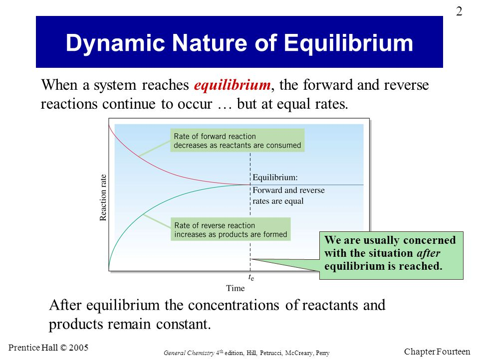 Dynamic Nature of Equilibrium