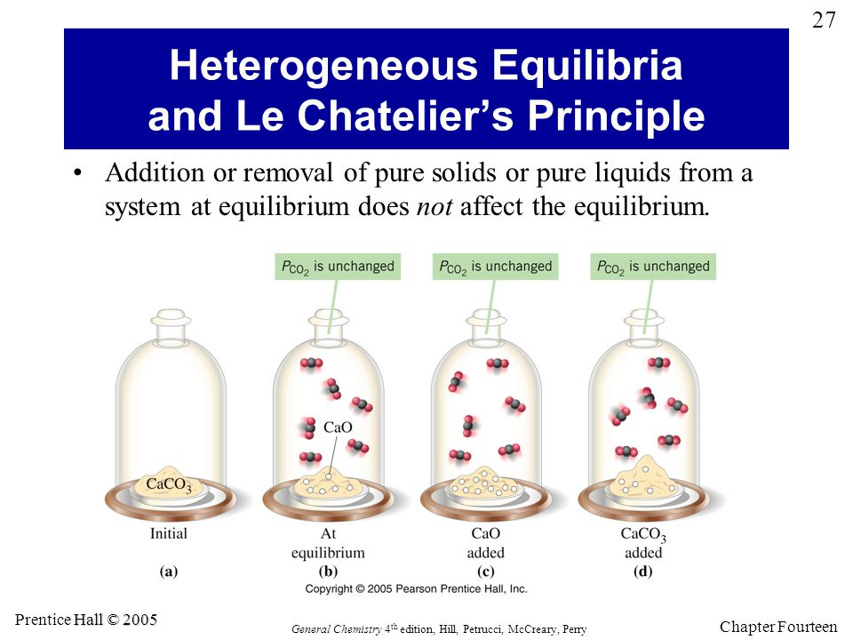 Heterogeneous Equilibria and Le Chatelier's Principle