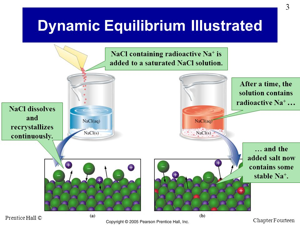 Dynamic Equilibrium Illustrated