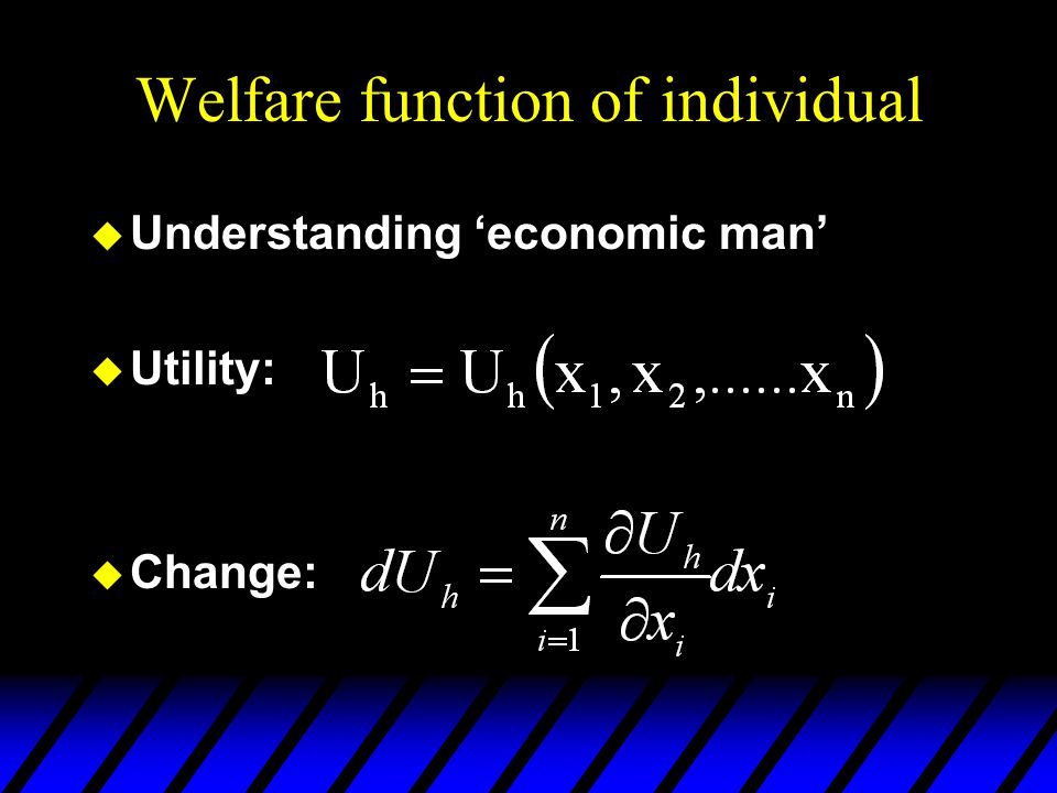 Welfare function of individual