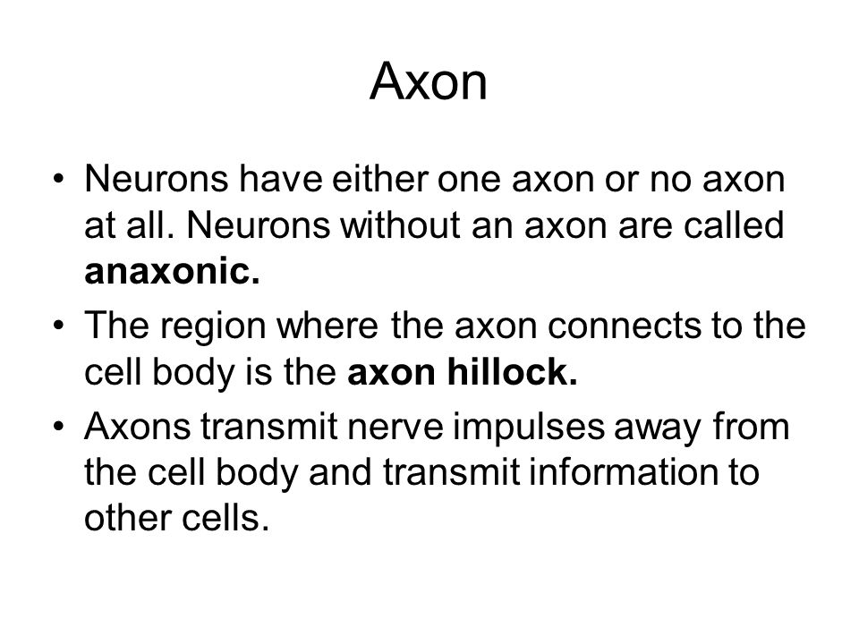Axon Neurons have either one axon or no axon at all. Neurons without an axon are called anaxonic.