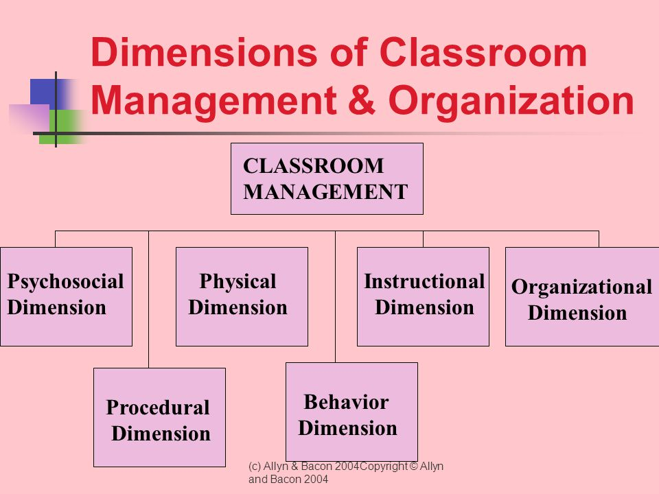Dimensions of Classroom Management & Organization