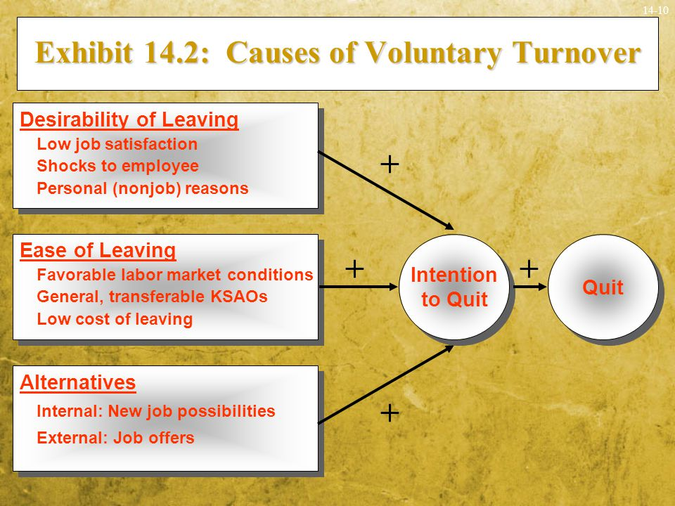 Exhibit 14.2: Causes of Voluntary Turnover