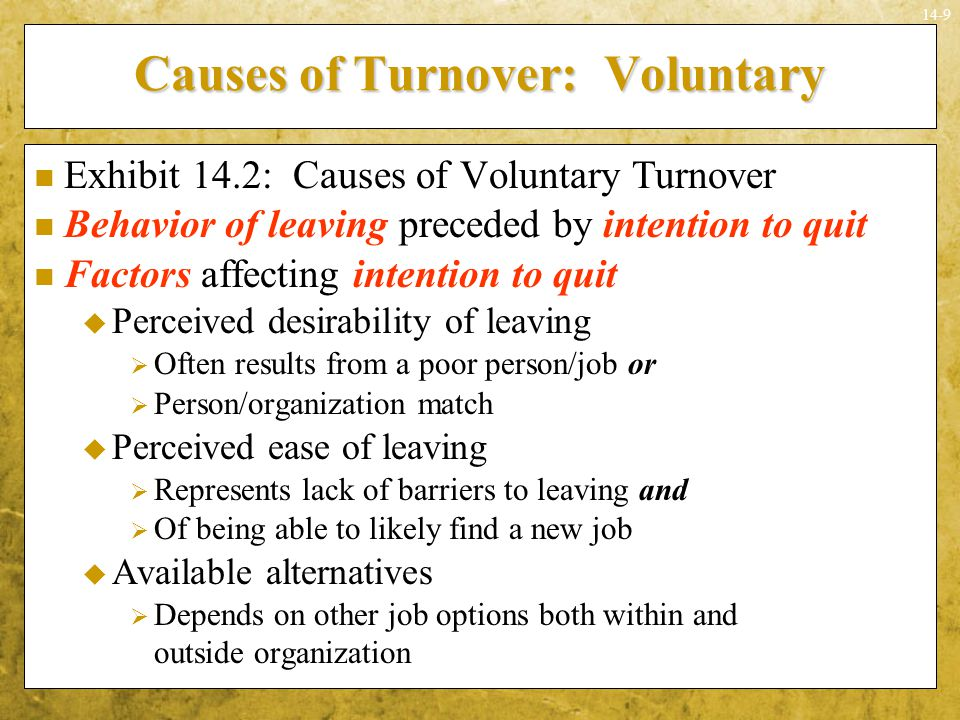 Causes of Turnover: Voluntary