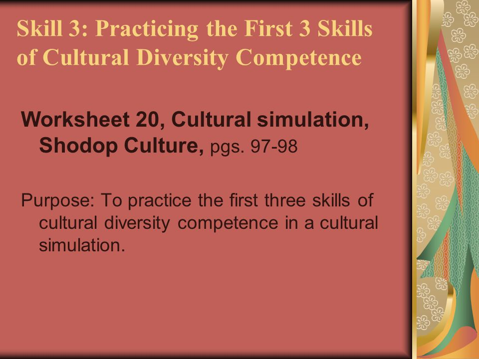 Skill 3: Practicing the First 3 Skills of Cultural Diversity Competence