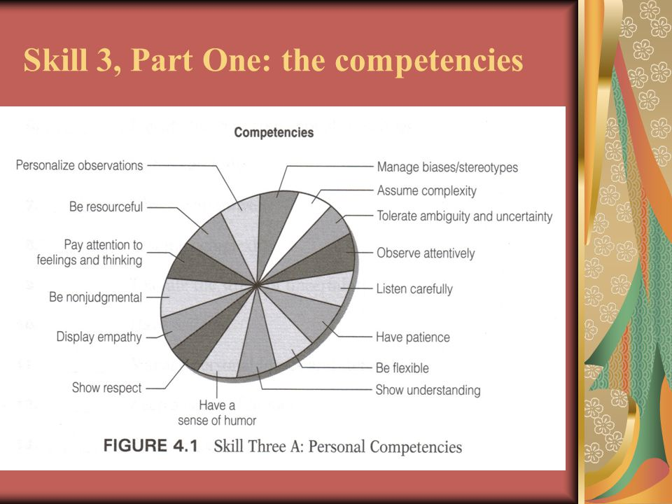 Skill 3, Part One: the competencies