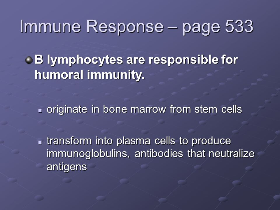 Immune Response – page 533 B lymphocytes are responsible for humoral immunity. originate in bone marrow from stem cells.
