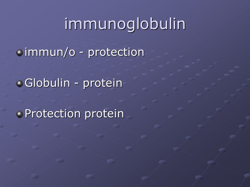 immunoglobulin immun/o - protection Globulin - protein