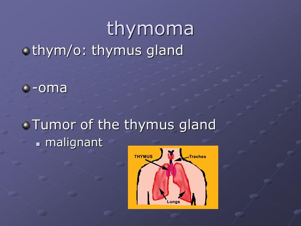 thymoma thym/o: thymus gland -oma Tumor of the thymus gland malignant