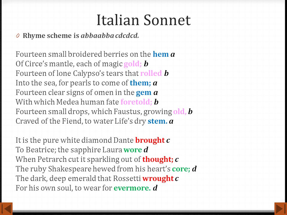 Italian Sonnet Fourteen small broidered berries on the hem a