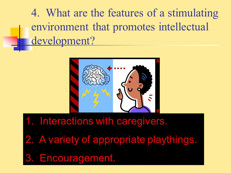 4. What are the features of a stimulating environment that promotes intellectual development