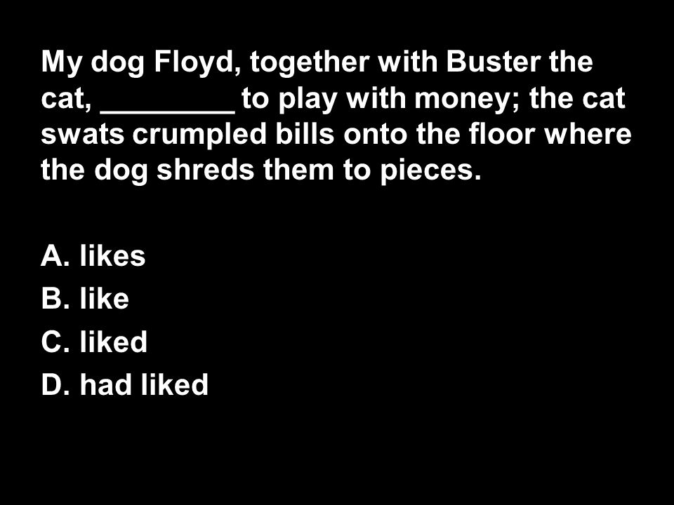 My dog Floyd, together with Buster the cat, ________ to play with money; the cat swats crumpled bills onto the floor where the dog shreds them to pieces.