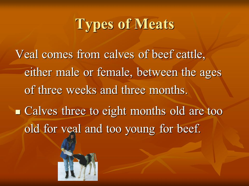 Types of Meats Veal comes from calves of beef cattle, either male or female, between the ages of three weeks and three months.