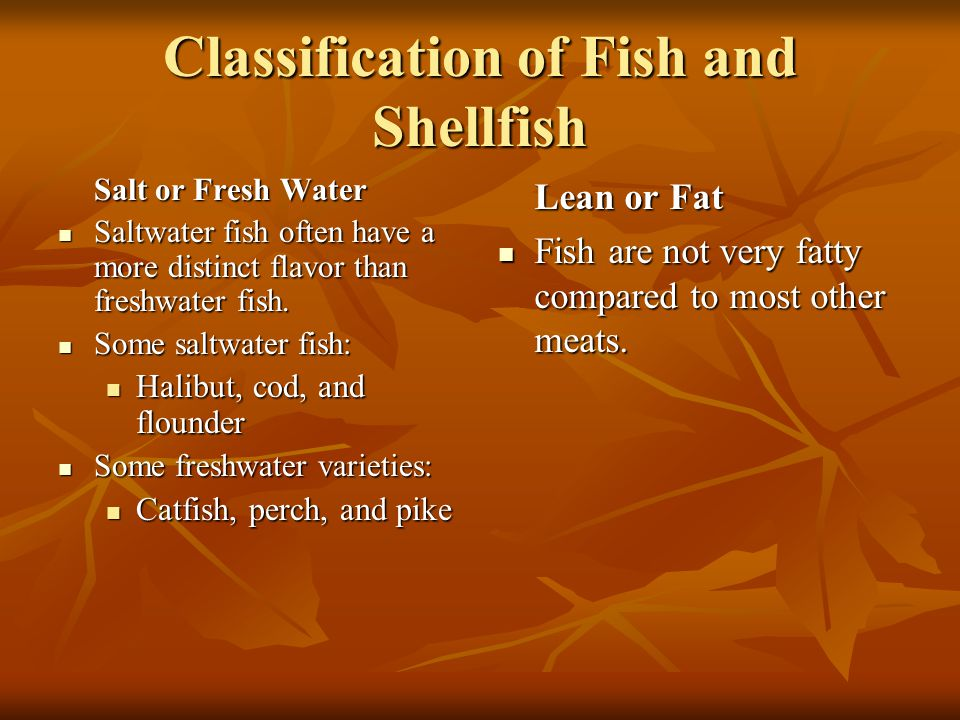 Classification of Fish and Shellfish