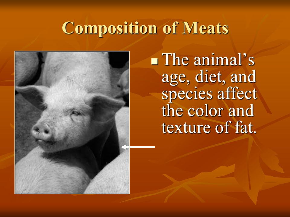 Composition of Meats The animal's age, diet, and species affect the color and texture of fat.