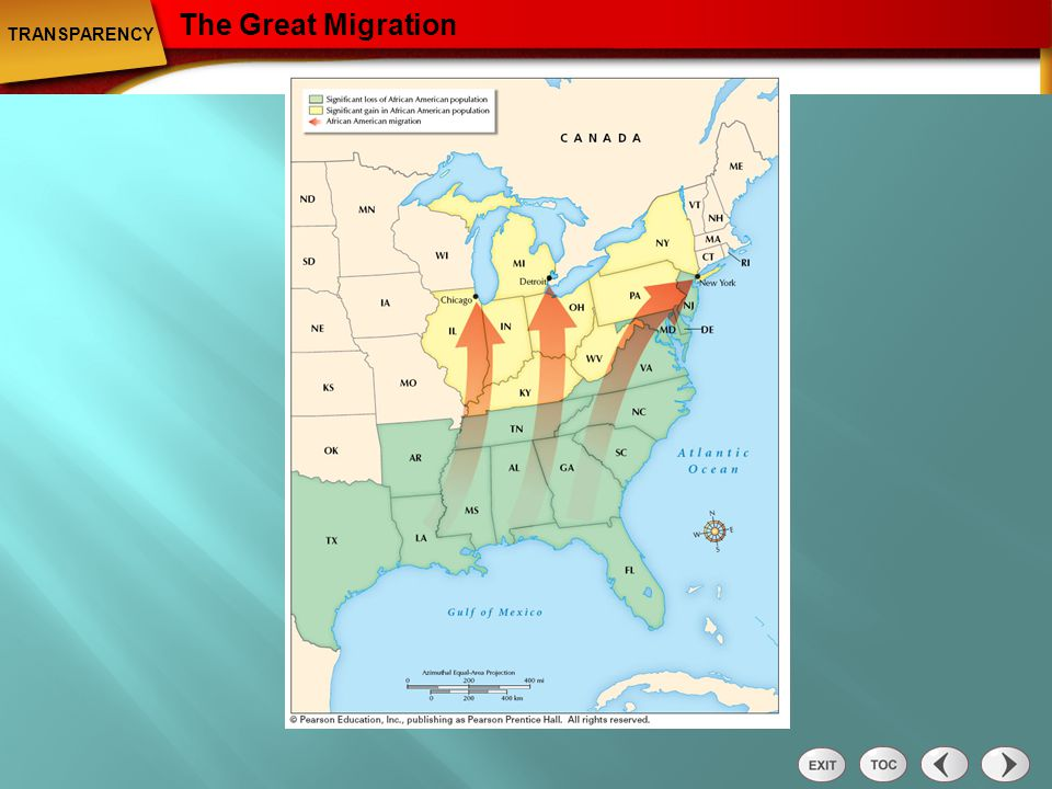 The Great Migration TRANSPARENCY