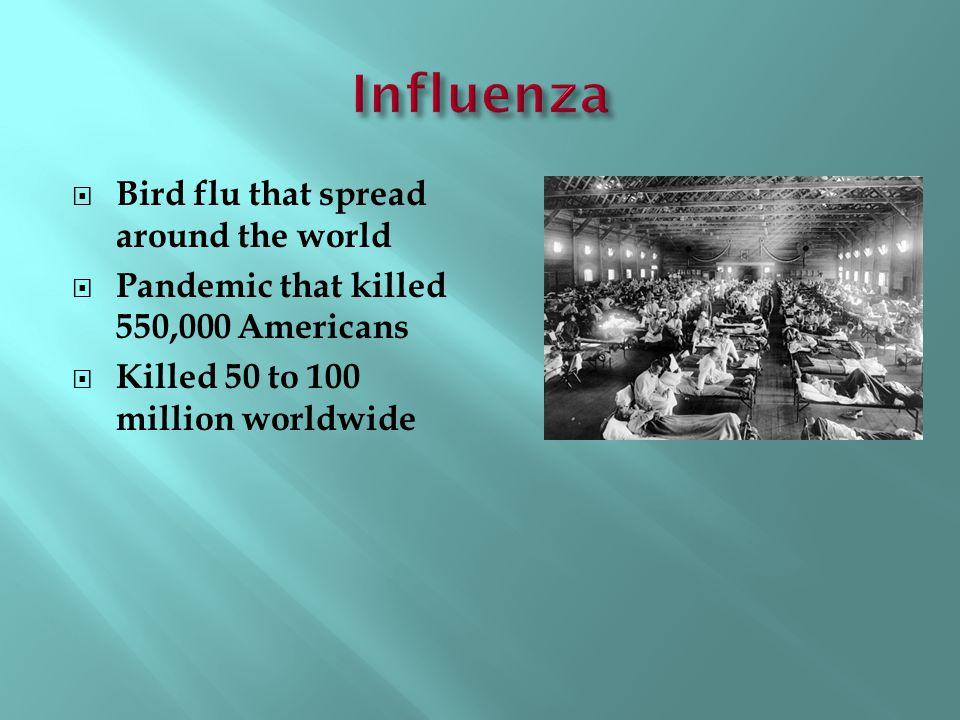 Influenza Bird flu that spread around the world