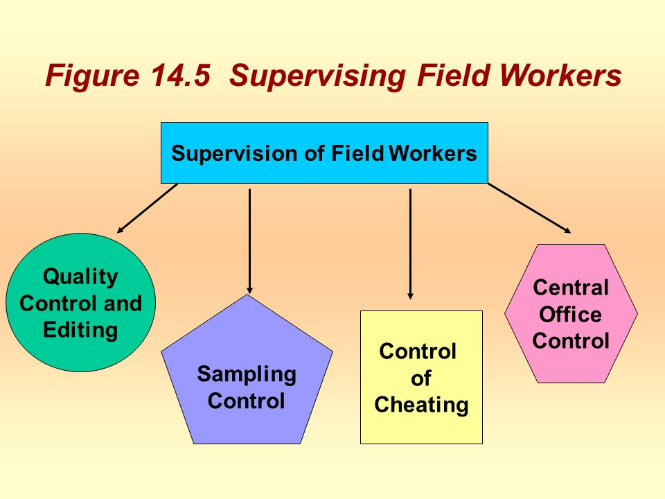 Figure 14.5 Supervising Field Workers Supervision of Field Workers