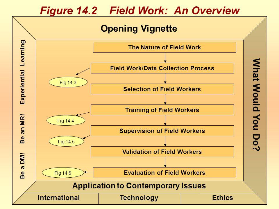 Figure 14.2 Field Work: An Overview