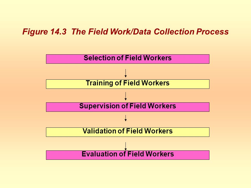 Figure 14.3 The Field Work/Data Collection Process