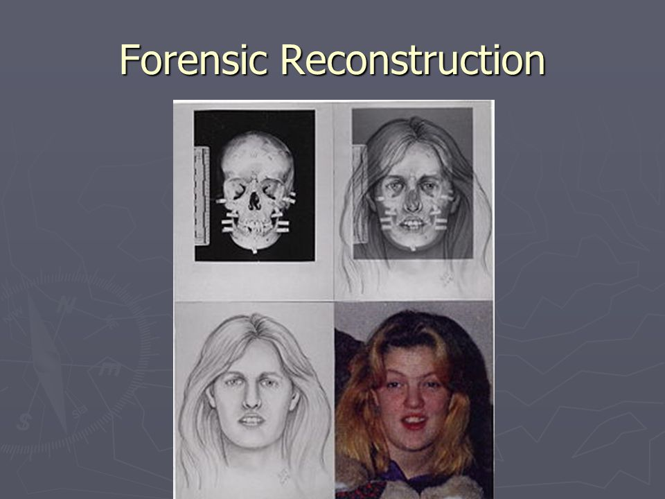 Forensic Reconstruction