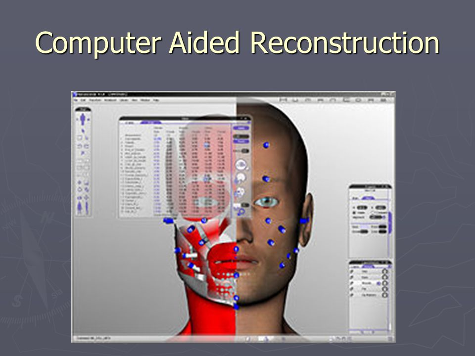 Computer Aided Reconstruction