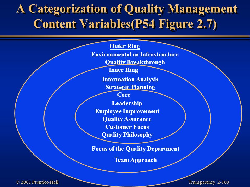 Environmental or Infrastructure Focus of the Quality Department