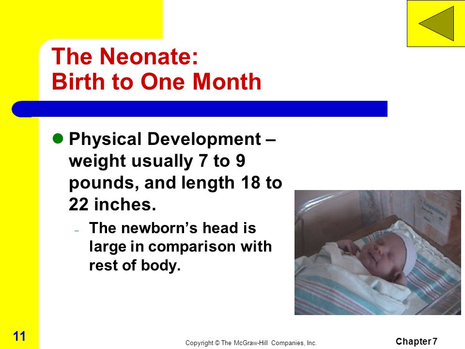 The Neonate: Birth to One Month