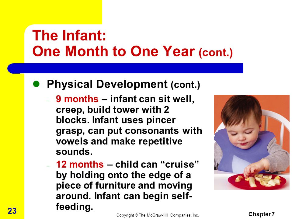 The Infant: One Month to One Year (cont.)