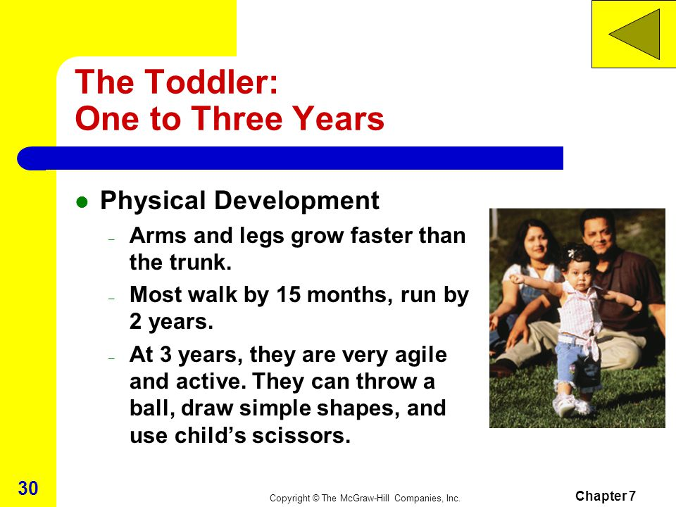 The Toddler: One to Three Years