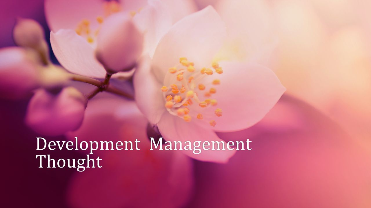 Development Management Thought