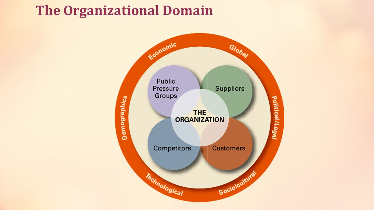 The Organizational Domain