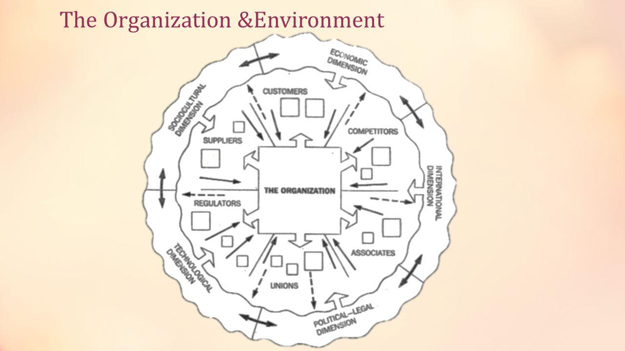 The Organization &Environment