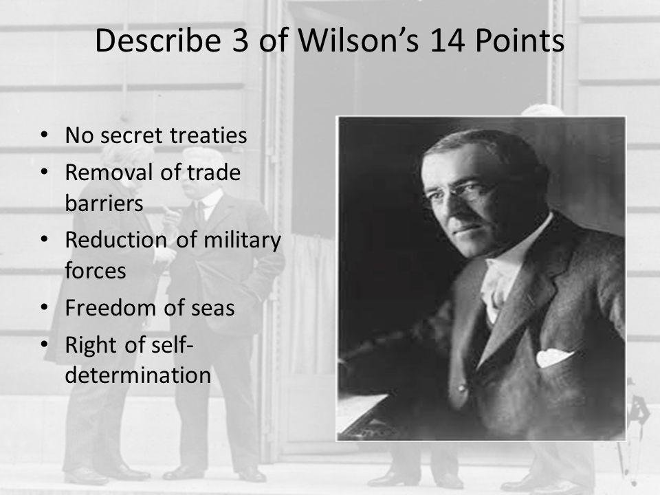 Describe 3 of Wilson's 14 Points