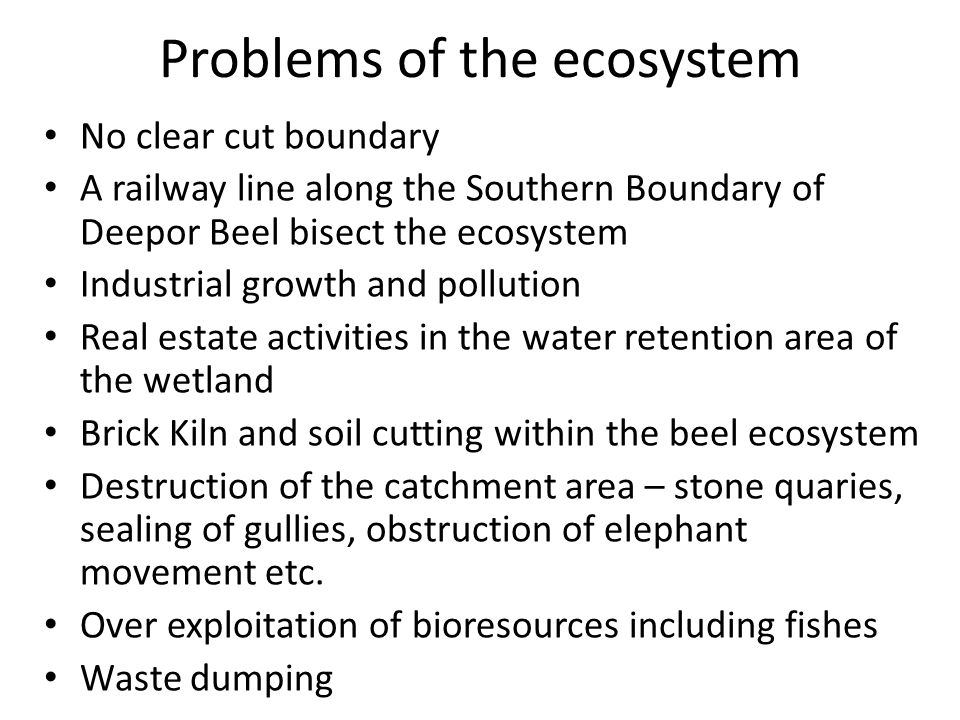 Problems of the ecosystem