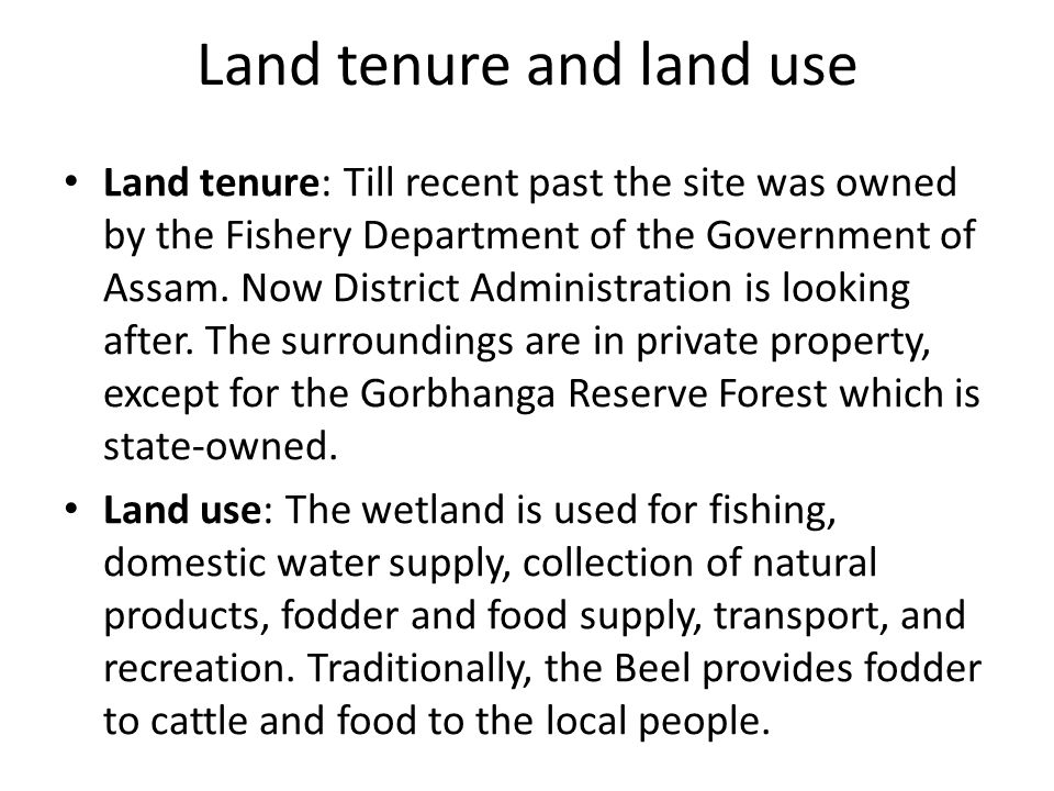 Land tenure and land use