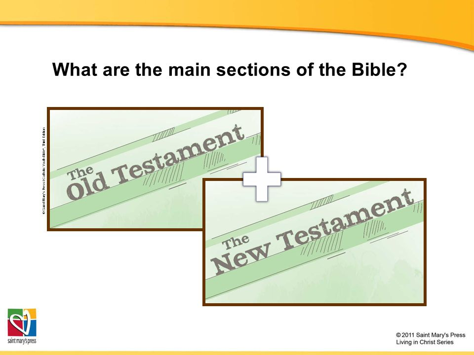 What are the main sections of the Bible