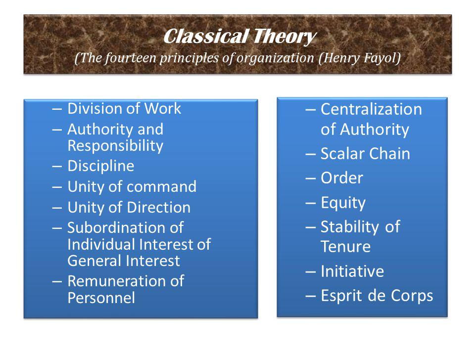 Classical Theory (The fourteen principles of organization (Henry Fayol)