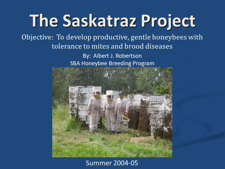 SBA Honeybee Breeding Program