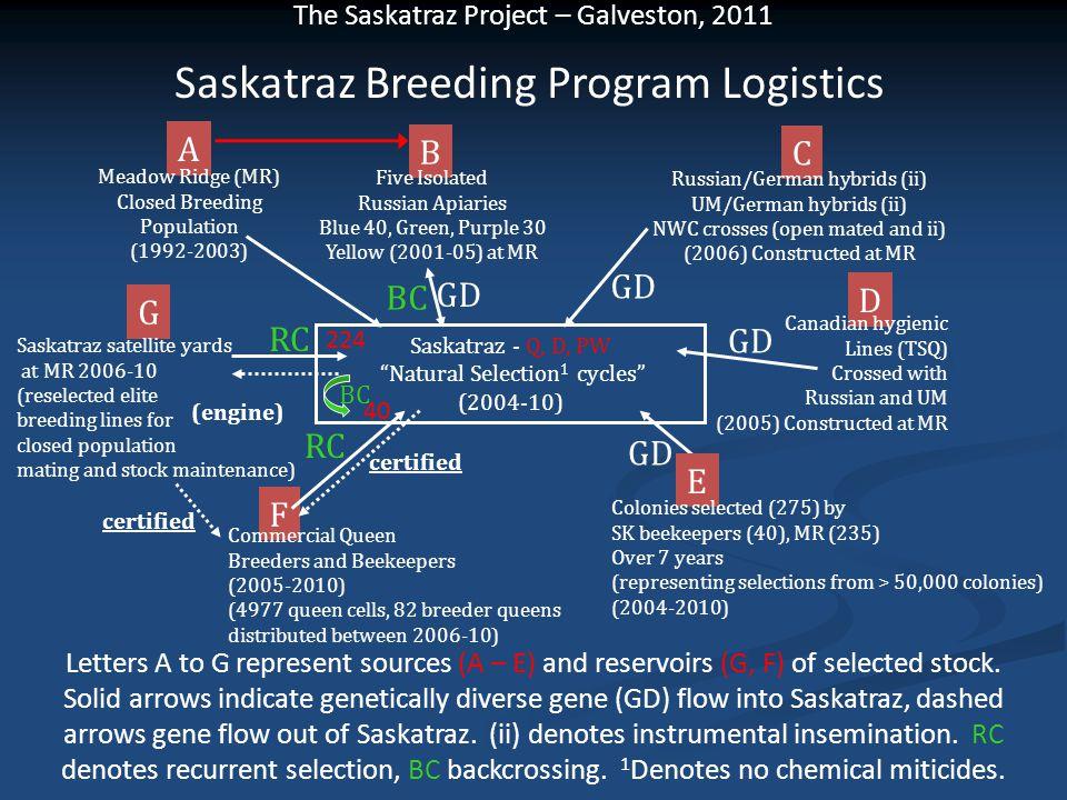 Saskatraz Breeding Program Logistics