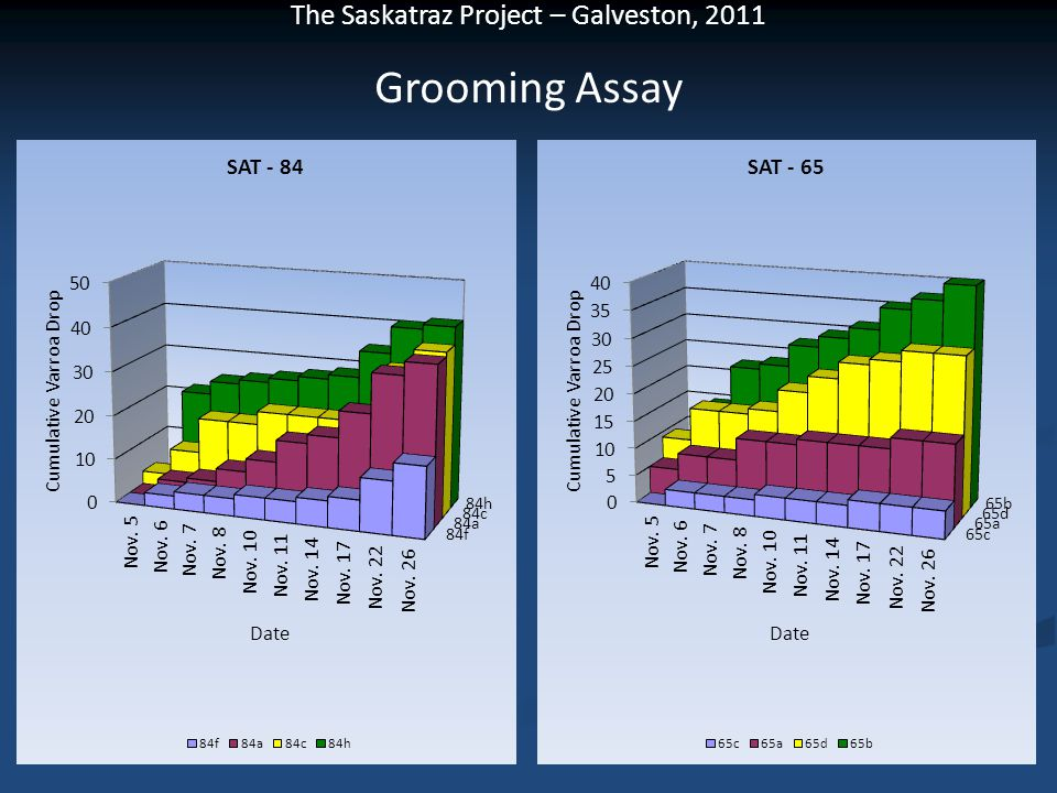 Grooming Assay