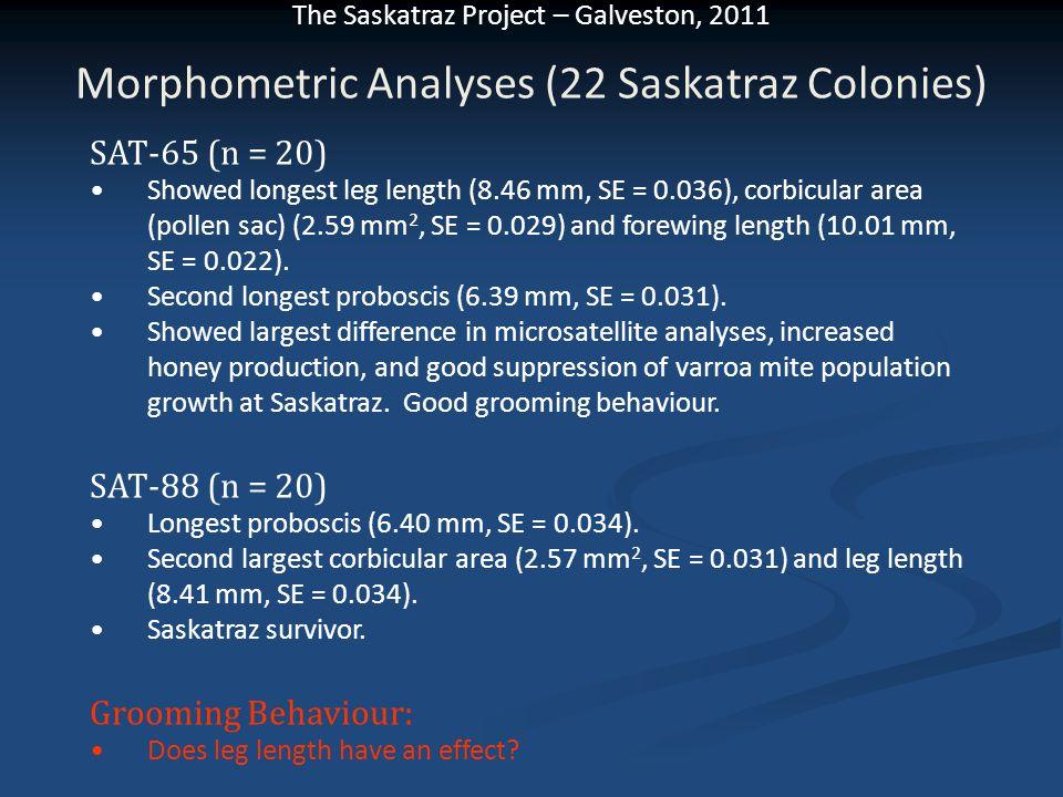 Morphometric Analyses (22 Saskatraz Colonies)