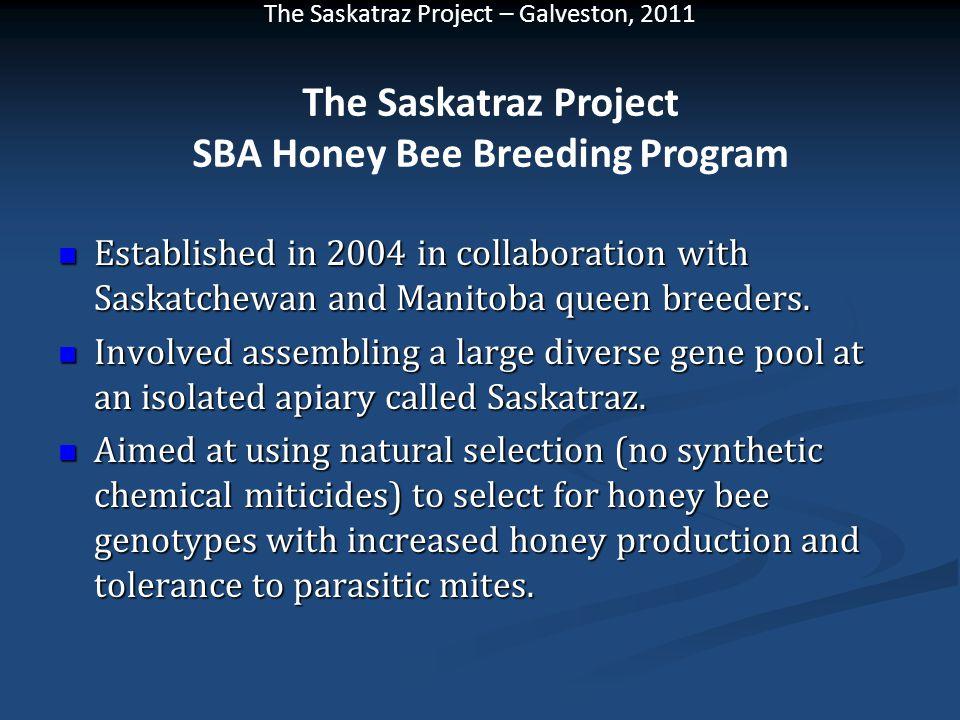 The Saskatraz Project SBA Honey Bee Breeding Program