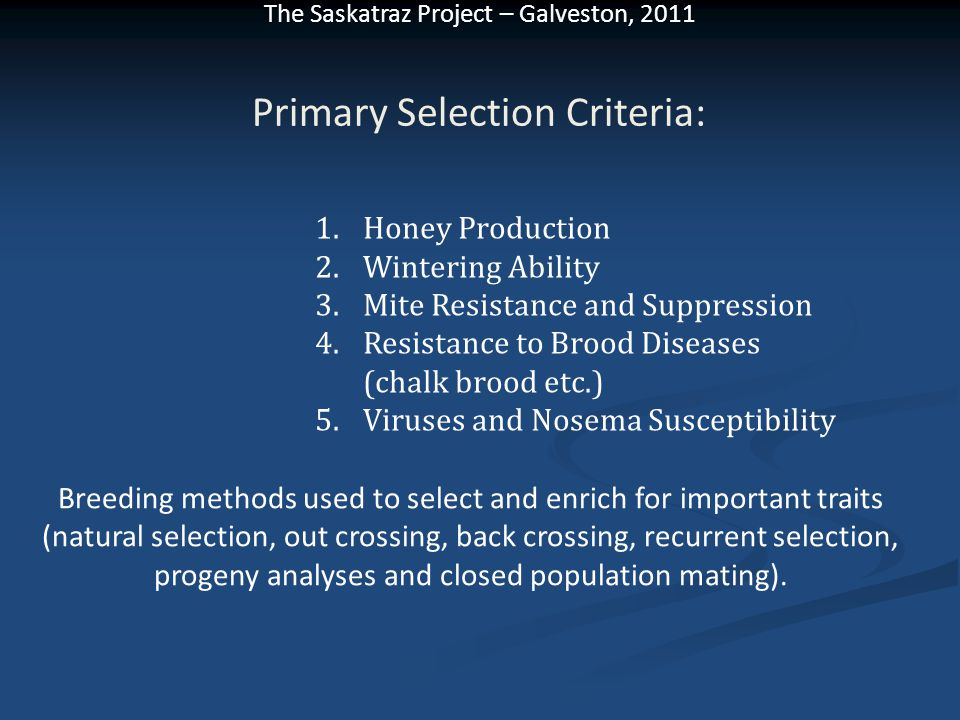 Primary Selection Criteria: