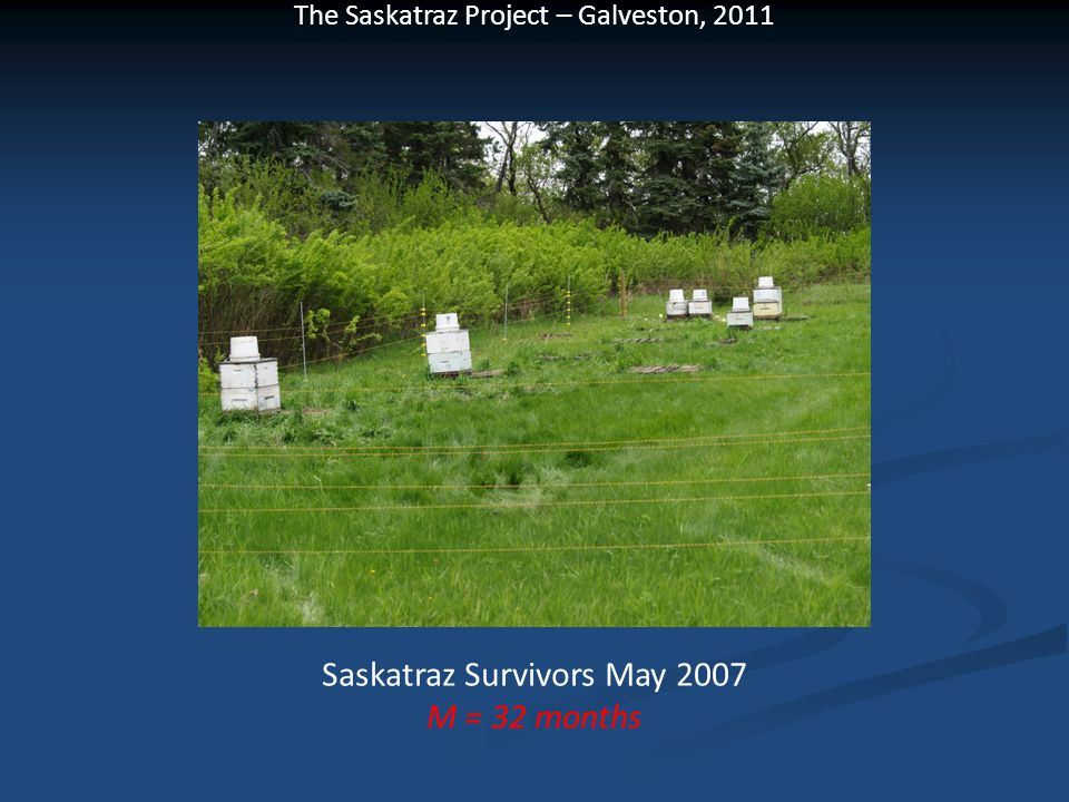 Saskatraz Survivors May 2007 M = 32 months