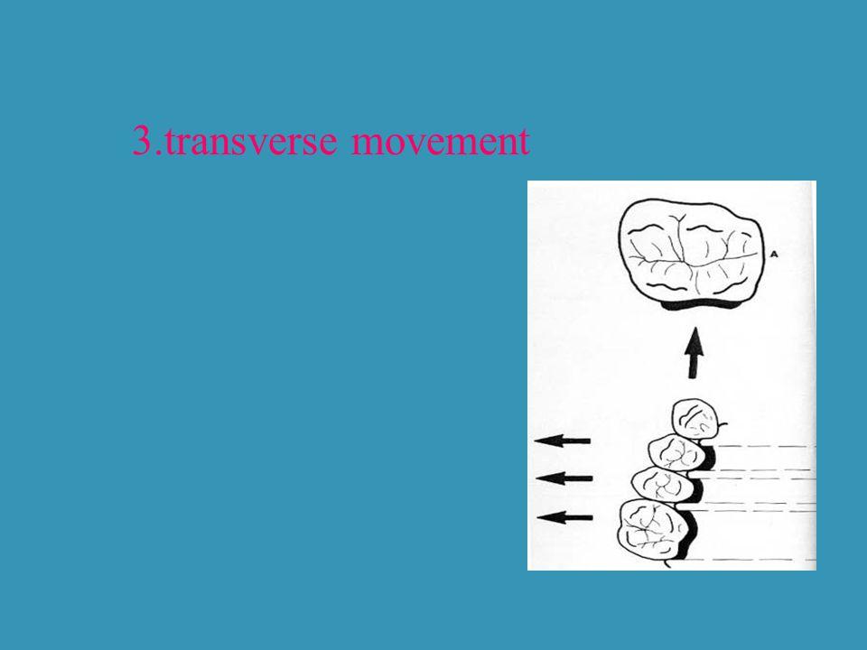 3.transverse movement