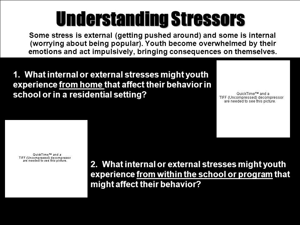 Understanding Stressors