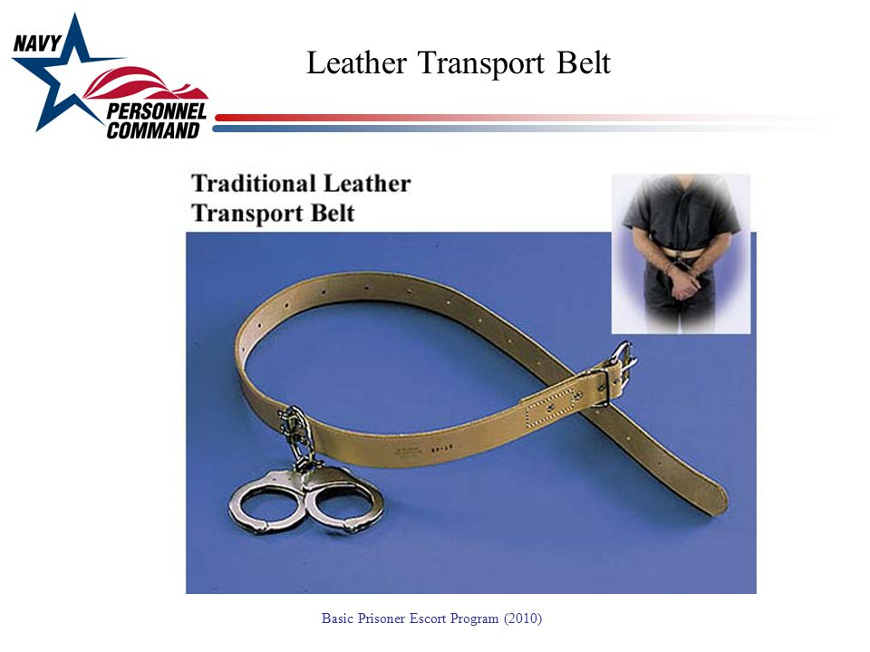 Leather Transport Belt