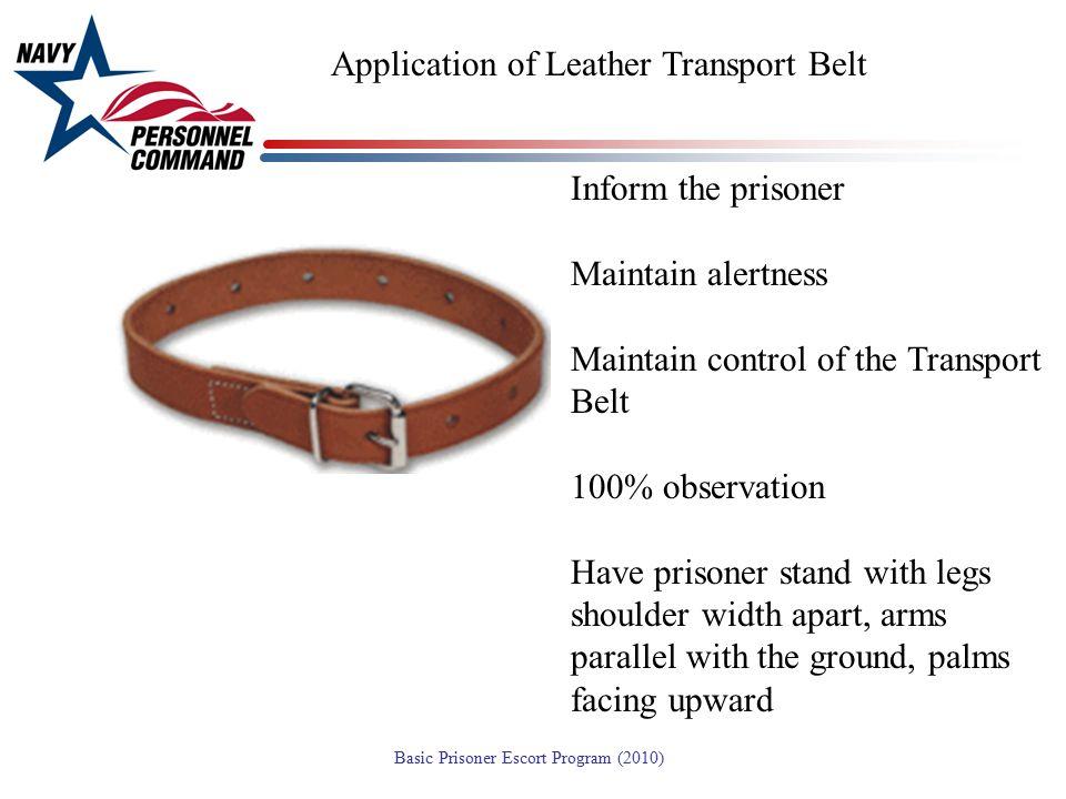 Application of Leather Transport Belt