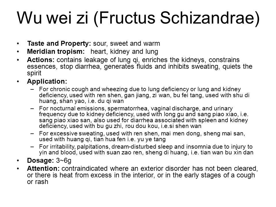 Wu wei zi (Fructus Schizandrae)